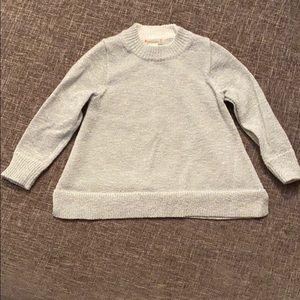 crewcuts sparkly silver sweater
